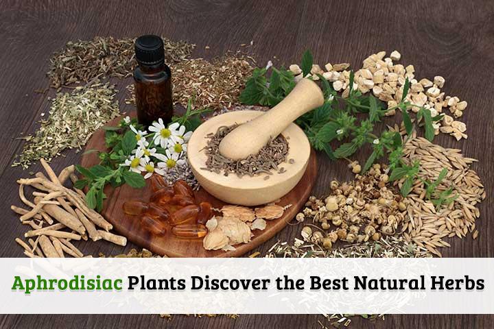 aphrodisiac plants